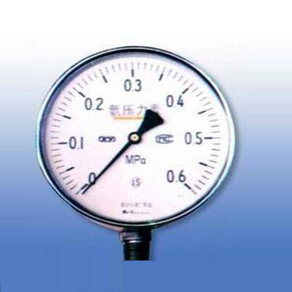 不銹鋼氨用壓力表