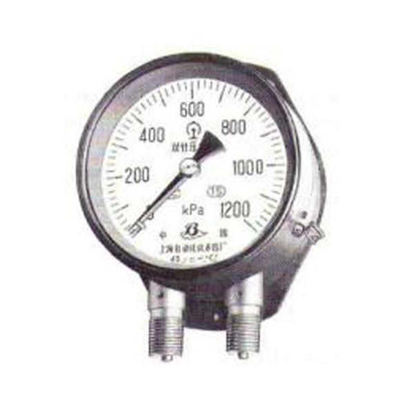 全不銹鋼雙支雙管壓力表