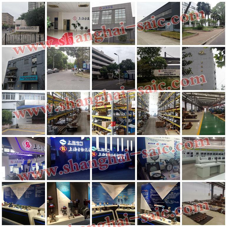 上海自動化儀表股份有限公司